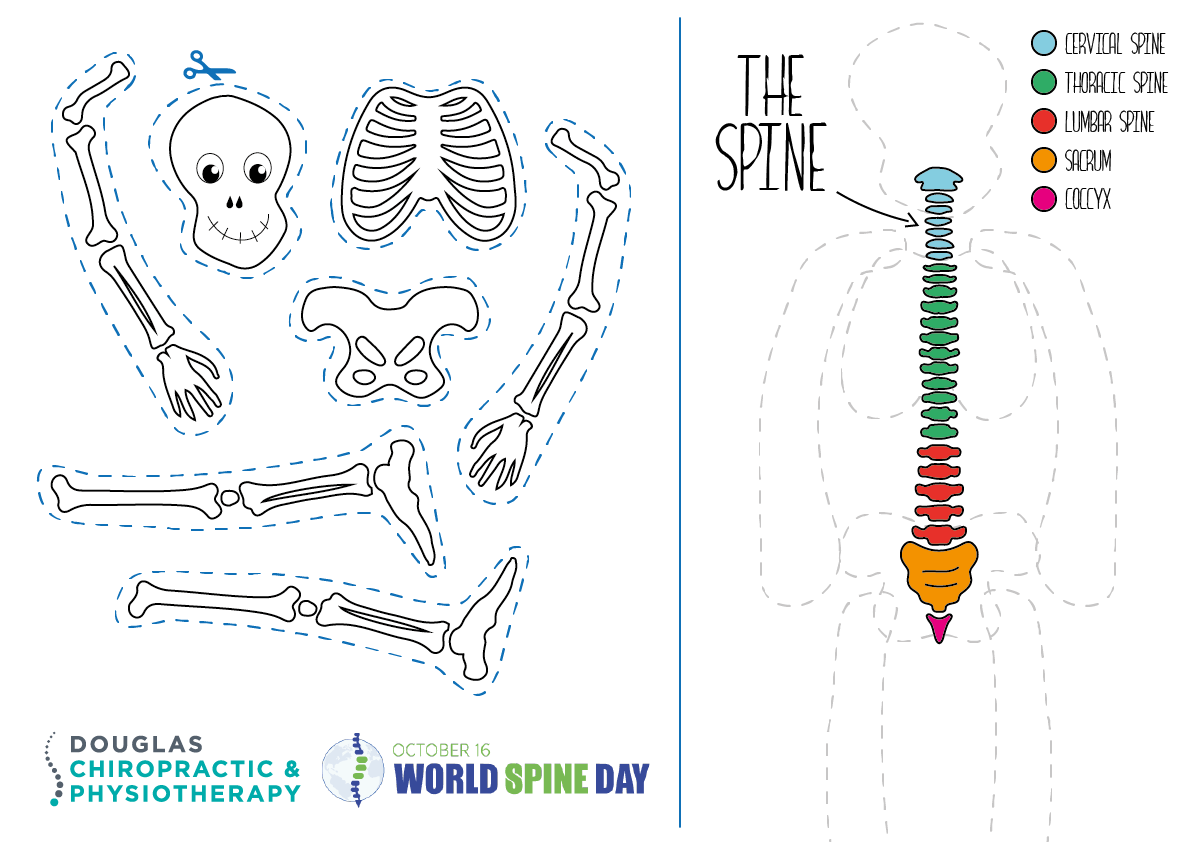 chiropractic activity sheet for kids world spine day 2017