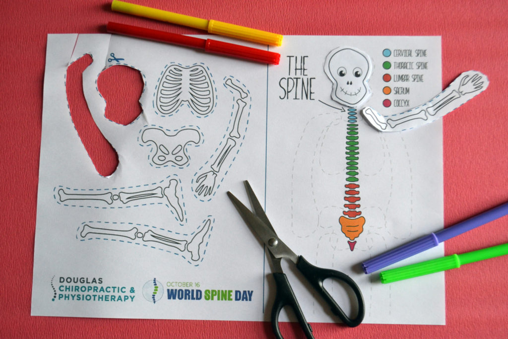 skeleton kids spine